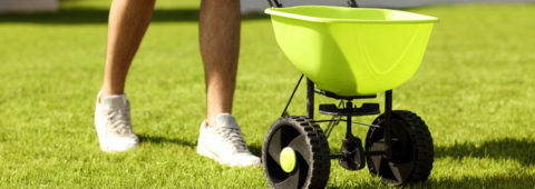 Fertilizing Programs