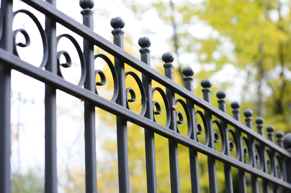 Picture of Wrought Iron Fencing